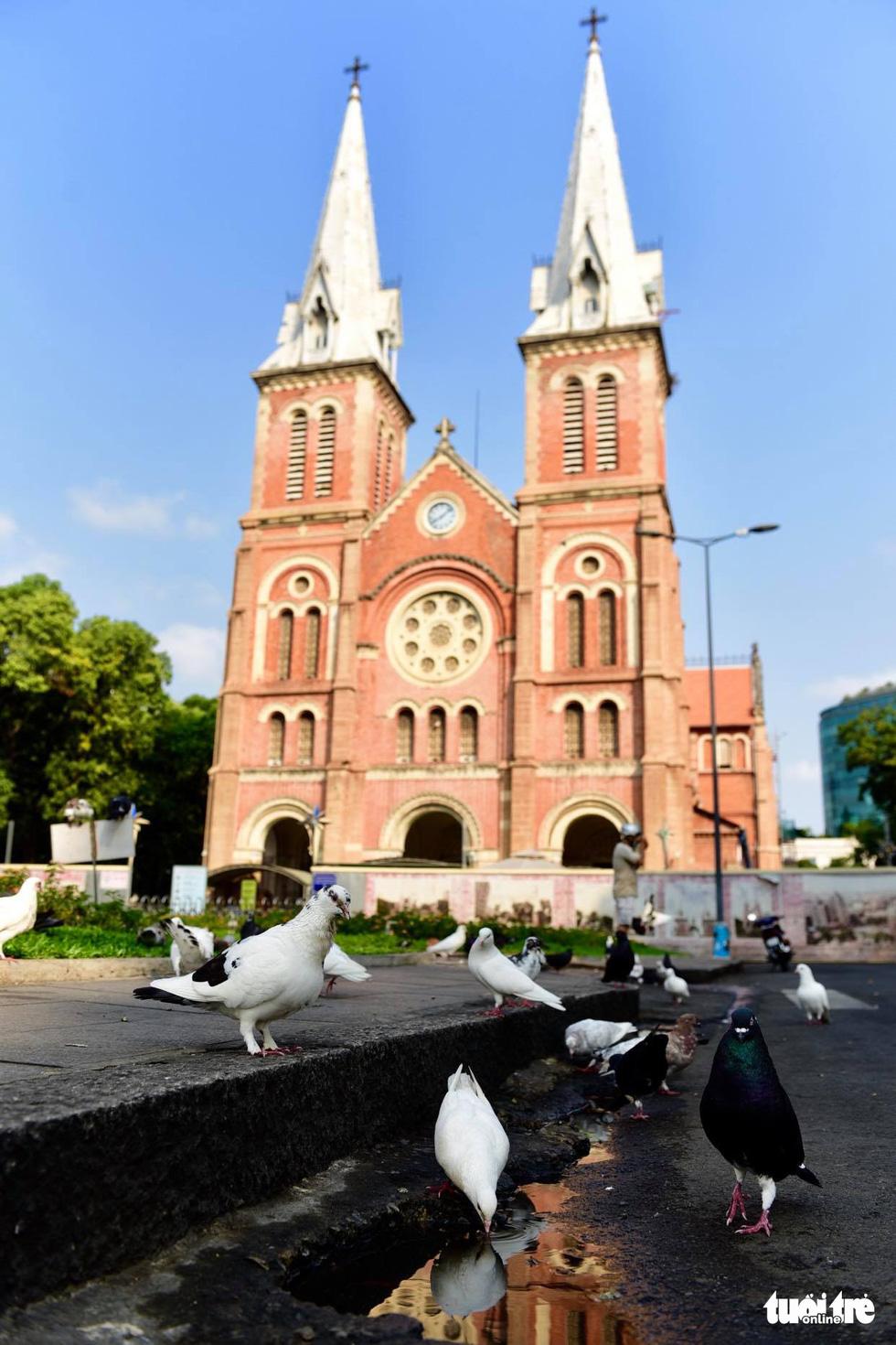 Sài Gòn vắng lặng khác lạ trong ngày đầu cách ly toàn xã hội - Ảnh 4.